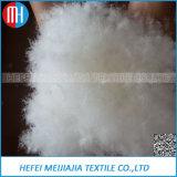 Chine 90% / 95% Chêne gris et blanc de haute qualité et goose à la vente chaude (RDS)