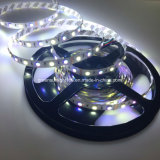 RGB + W LED Strip Lights for Floor