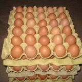 Huevo de la bandeja 30 de la celulosa
