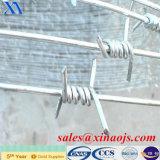 電気電流を通された上塗を施してある有刺鉄線(XA-BW013)