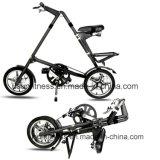 Bicicleta plegable de la ciudad para la venta