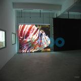 Schermo di visualizzazione dell'interno caldo del LED di colore completo di vendita P7.62mm