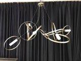 Lâmpadas decorativas de suspensão personalizadas do pendente do metal (KA00111)
