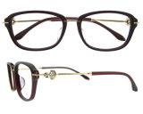 새로운 디자인 광학 프레임 형식 아세테이트 안경알 프레임 여자 Eyewear