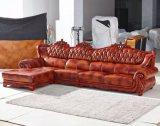 أوروبا أريكة, جلد أريكة, أريكة خشبيّة, أمريكا أريكة ([أ37])