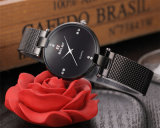 Kwarts van het van de Bedrijfs manier van Belbi het Toevallige Horloge van de Vrouwen Waterdichte van het Staal