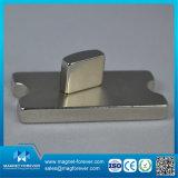 Magnete a magnete permanente del motore del magnete della terra rara