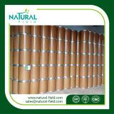 Polvere CAS dell'estratto del foglio di Biloba del Ginkgo del rifornimento nessun estratto della pianta 90045-36-6