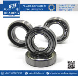 Pièces de moto auto Alternateur Deep Groove Ball Bearing (6006)