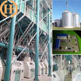 Projeto Turnkey de 80t/24hrs, 3-5t/h Planta de moagem de farinha de milho e farinha embaladora Accossories máquinas,