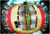 El nuevo diseño de la cámara CCD 700 Tvl CCTV Mini vigilancia digital con una cámara panorámica de 360 grados