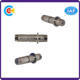 Panneau en acier inoxydable / 4.8 / 8.8 / 10.9 Broche hexagonale galvanisée non standard pour machines / industrie