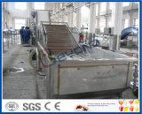 Fruchtwaschmaschineapfel, der orange Waschmaschineaprikosenwaschmaschine wäscht