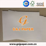 Chemise de blanc de bonne qualité de l'artisanat dans la feuille de papier