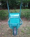 플라스틱 쟁반 바퀴 무덤