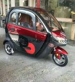 سبيكة عجلة كهربائيّة درّاجة ثلاثية سيارة مع [60ف] بطارية كبيرة