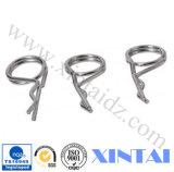 Formes fiables en fibre d'acier inoxydable de qualité (ISO9001, Ts16949, conforme à la loi professionnelle)