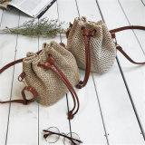 2017 sacchetti di spalla materiali delle borse dei sacchetti delle signore della nuova paglia di disegno