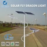 Bluesmart 100W IP65 Solar-LED Straßenbeleuchtungen mit Fernsteuerungs