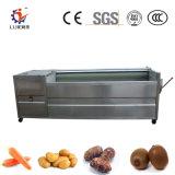 Aço inoxidável Legumes de raiz e máquina de peeling de Limpeza da escova