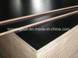 15 milímetros de negro o película de Brown hicieron frente a la madera contrachapada para la construcción o el edificio