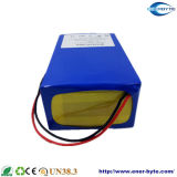 24のボルトの電気スクーターのリチウム電池