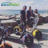 Vespa eléctrica 2017 de la motocicleta de Ecorider Citycoco con EEC Coc aprobado