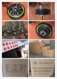 Motore elettrico del mozzo Jq-15-M-1007 (60V1.2KWalnico40H)
