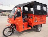인기 상품 중국 최신 화물 Trike 또는 모터 오두막 세발자전거