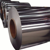 A telhadura ASTM 304 do metal laminou a bobina do aço inoxidável