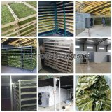 машина для просушки еды 2018industrial/оборудование сушилки рыб/машина для просушки фрукт и овощ