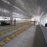 De Vlakke Structuur van uitstekende kwaliteit van de Apparatuur en van het Staal voor Grill en Kwekers