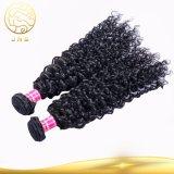 A melhor extensão indiana de venda do cabelo humano do Virgin da onda Curly