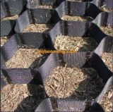 HDPE Geocell Blake пластичный для строительства дорог
