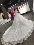 Aoliweiyaの走路のウェディングドレスの長い袖の敏感なレース