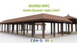 Наружные защитные элементы из дерева и Композитный пластик экструзии настенной панели с Водонепроницаемость
