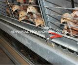 販売の若めんどりの養鶏場のためのフルオートマチックの若めんどり電池ケージはおりに入れるシステム(Hフレーム)を