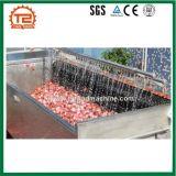 산업 생강 감자 청소 기계 및 양파 세탁기