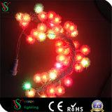 Erstklassiges Zeichenkette-Licht der Werbungs-LED mit Stern