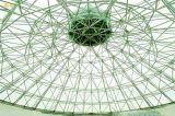 Dak van het Frame van de Structuur van het Staal van de grote Spanwijdte het Ruimte