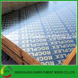 2回の出版物のボードシート、合板中国のフィルムの表面層木