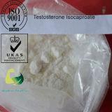 Progestérone hydroxy CAS 68-96-2 de Hormonepowder 17 chauds de vente alpha