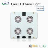 Klassisch-Typ 4*200W LED wachsen mit CREE Chips für grünes Haus-Pflanzen hell
