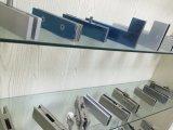 Нержавеющая сталь для стеклянного штуцера заплаты двери