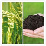 Ácido de Fulvic do ácido Humic de fertilizante orgânico