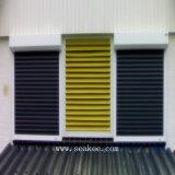Obturateur en aluminium de porte/rouleau/porte/obturateurs de Rooling