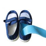 Pattino di lavoro antistatico per il locale senza polvere, maglia di ESD (pattino cinghia-appiccicoso)