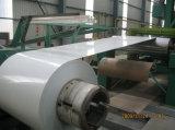 [بر-بينتد] صناعة محترفة يغلفن فولاذ ملا
