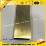 Perfil del aluminio de la electroforesis