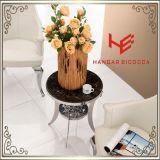 Мебели гостиницы мебели дома мебели нержавеющей стали таблицы журнального стола (RS161304) таблица стороны таблицы чая таблицы пульта таблицы мебели угловойой самомоднейшая